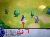 youhei.jpg